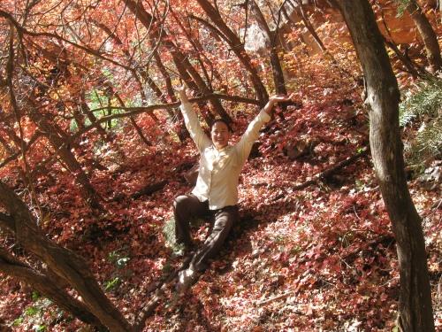 Yummy fall foliage at Supai Tunnel