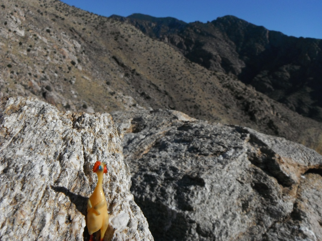 Micro Chicken atop The Cleaver- Prominent Point and Mount Kimball across Pima Canyon