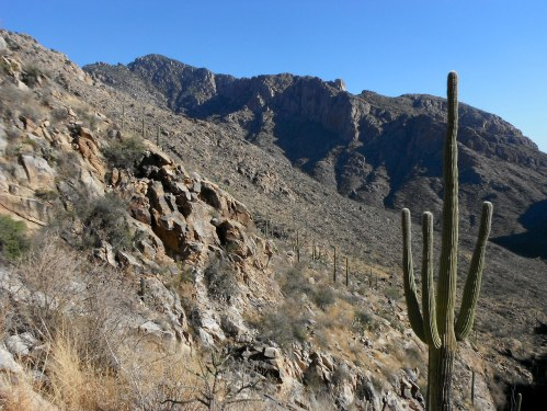 Prominent Point- another Pima Canyon peak I have my eye on