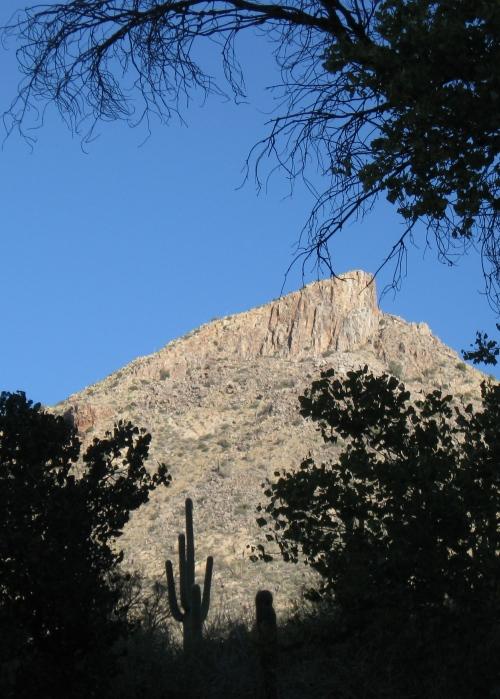Peak 4910- The Cleaver