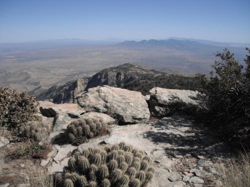 View South from Rincon Peak