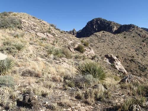 Prominent Point west ridgeline