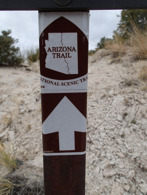 Arizona Trail- always a welcome sight!