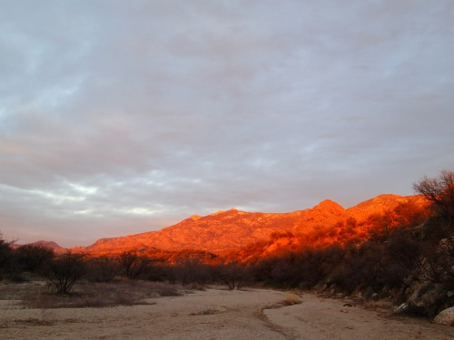 Sunset lights up Samaniego Ridge
