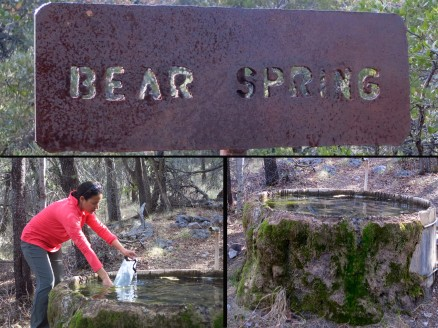 Partaking in Bear Spring's bounty