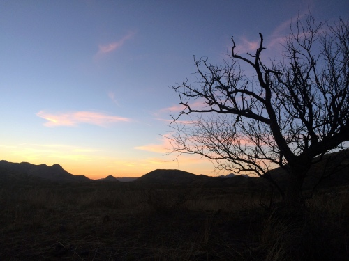 Sunset from Canelo West camp