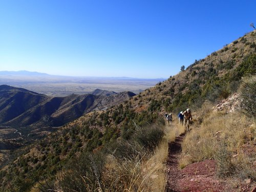Climbing to the Huachuca Crest
