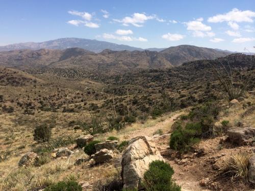 Hiking to the saddle
