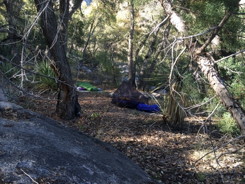 Camp in the West Fork