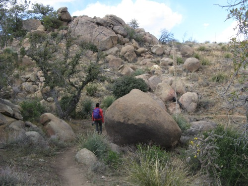 Boulders along AZT/Cody Trail