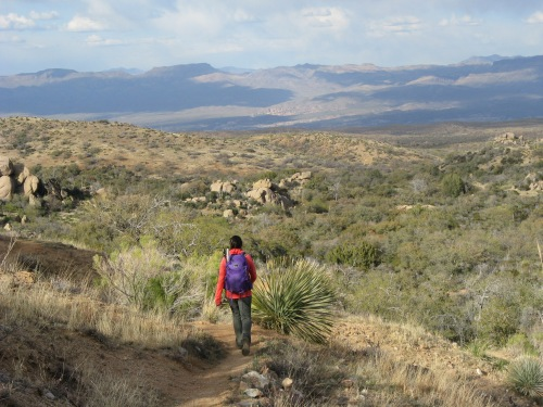 Along the AZT/Cody Trail