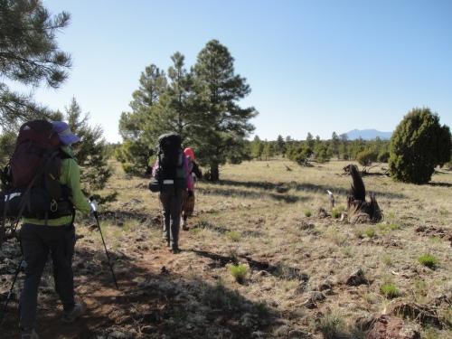 The rocky trek across Anderson Mesa