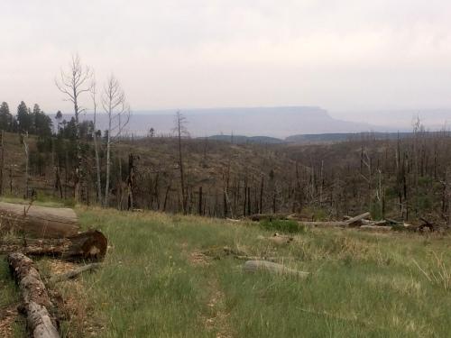 Vermilion Cliffs in the distance