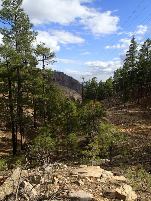 Coming off the Mogollon Rim