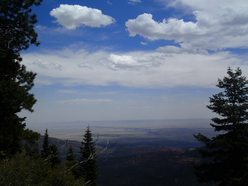 East Rim View of Marble Canyon