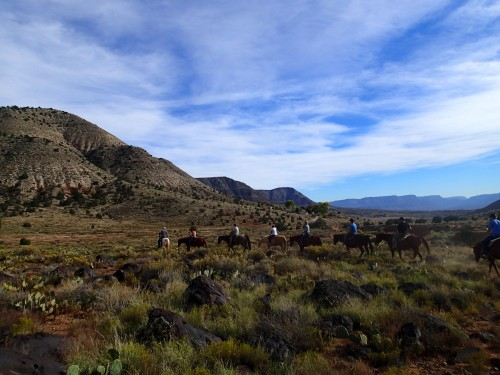 Horseback riding in Whitmore Canyon