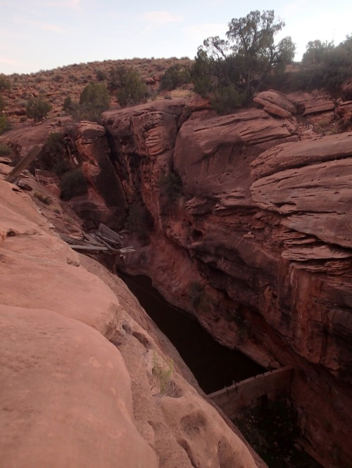 """Dam in the sandstone- one of the """"Pockets"""""""