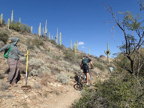 Standing aside for mountain bikers