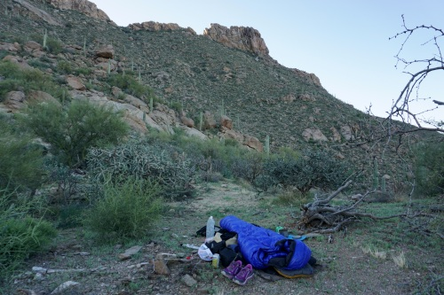 Cochie Canyon Camp
