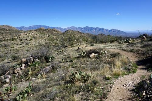 Sweeping curves of the Tortolita Ridgeline Trail