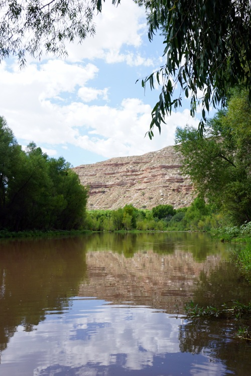 Verde River Reflections