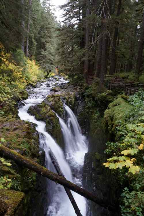 Sol Duc Falls near the end of our loop- touristy but beautiful!