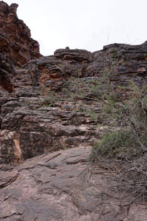 Papago Wall