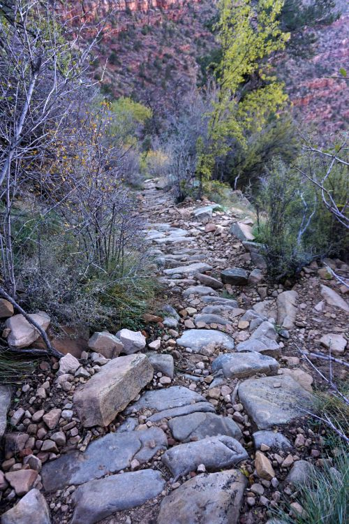 Trail Construction in the Coconino