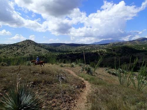 Riding Las Colinas