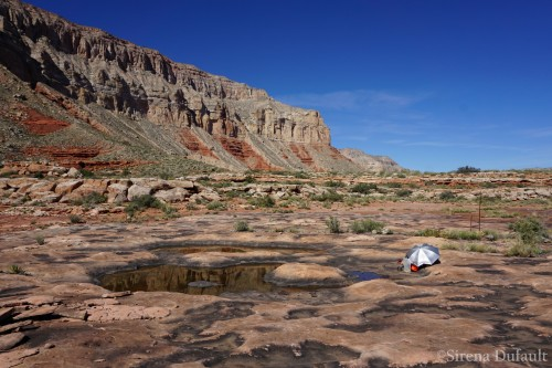 Shade and water are all I need for a siesta north of Dome Pocket Canyon
