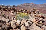 Hilltop Ruin, Escalante Route