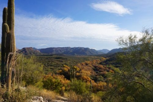 Arizona Trail - Gila River Canyons