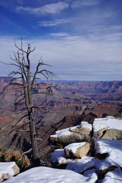 Snow at Grand Canyon South Rim